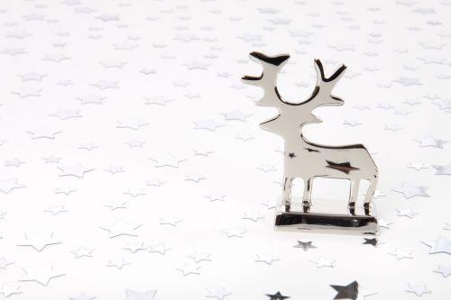 gyvūnas, fonas, Kalėdos, apdaila, elnias, šviesa, šiaurės elniai, paprastas, kibirkštis, žvaigždė, balta, xmas, šiaurės elnių ir žvaigždžių