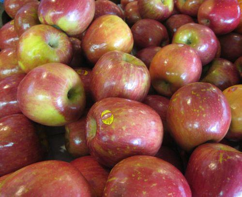 obuoliai, pardavėjas, vaisiai, turgus, parduodami obuoliai