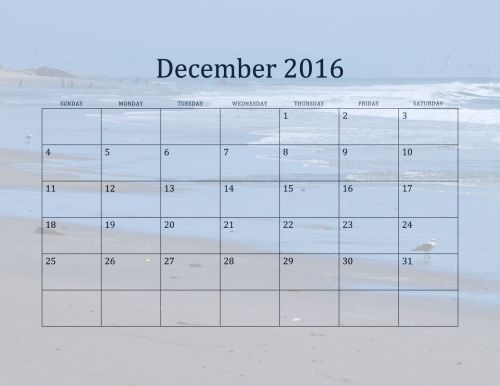 2016, gruodžio mėn ., kalendorius, kalendoriai, mėnuo, kas mėnesį, žurnalas, dienoraštis, carpenteria, žmonės, kajakas, žuvėdros, paukštis, paukščiai, bangos, avarija, Kalifornija, Pietūs & nbsp, Kalifornija, jūra, vandenynas, vanduo, 2016 m. Gruodžio mėn. Paplūdimio kalendorius