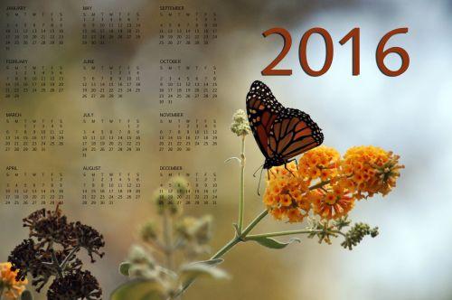 2016, 2016 & nbsp, kalendorius, metinis & nbsp, kalendorius, monarchas & nbsp, drugelis, drugelis, 2016 & nbsp, metinis & nbsp, kalendorius, 2016 m. Monarcho drugelio kalendorius Nr. 2