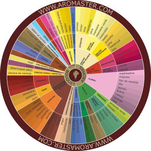 vynas, aromatas, ispanų, ispanų vyno aromato ratas