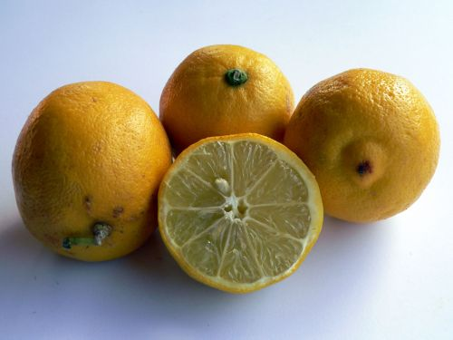 maistas, citrina, citrina