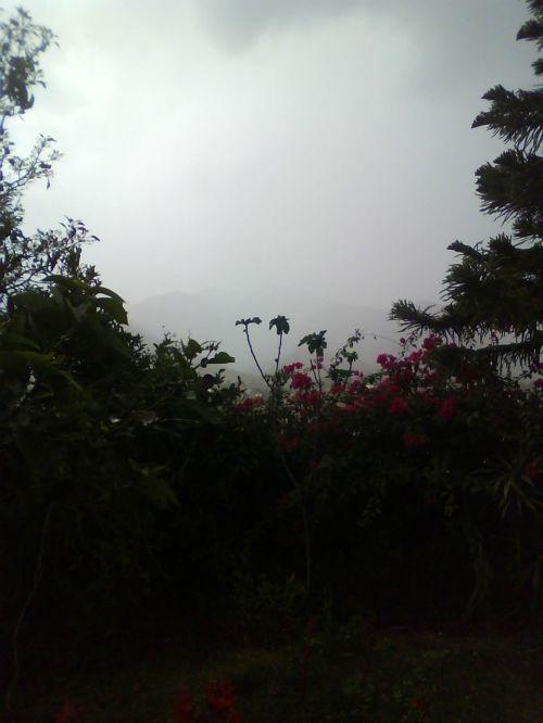 lietus, debesis, debesys, Debesuota, vėlai, pavasaris, debesuota popietė