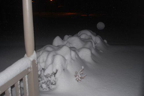Sniegas,  Žiema,  Sunkvežimis,  Šaltas,  Sniegas,  Snieguotas,  Blizzard,  Naktis,  Sniegas Krūmais