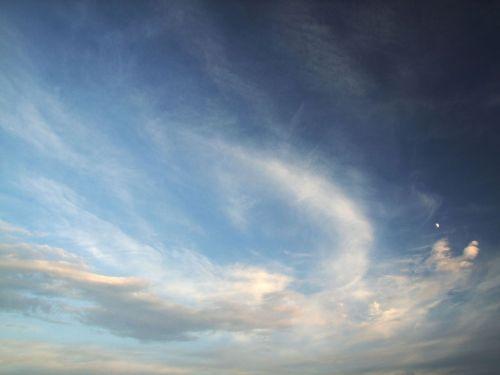 phoenix, paukštis, saulėlydis, vakaras, vasara, debesys, dangus, phoenix