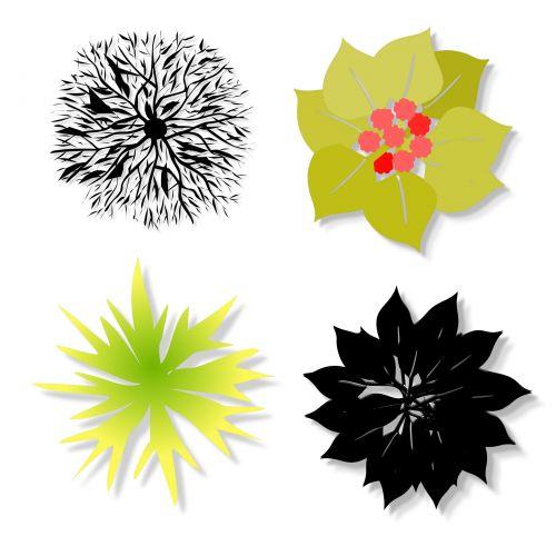 nustatyti, 4, keturi, krūmai, izoliuotas, balta, fonas, juoda, žalias, 4 krūmai