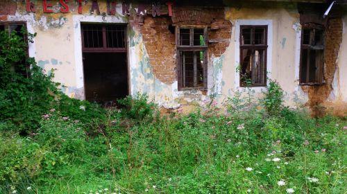 restoranas, paliktas, skilimas, regeneruotas, gamta, pastatas, tinkas, plyta, apleistas restoranas