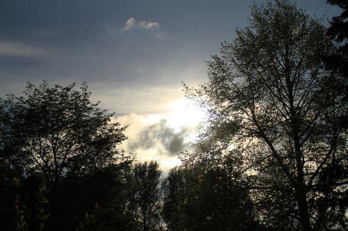 abendstimmung,saulėlydis,trejetas,baldakimas