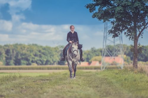 suaugęs,gyvūnas,dienos šviesa,jodinėjimas,laukas,mergaitė,žolė,arklys,Jodinėjimas arkliu,kraštovaizdis,žinduolis,gamta,lauke,asmuo,lenktynės,poilsis,Jodinėjimas