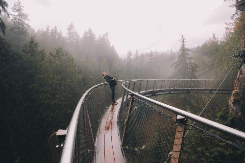nuotykis,kelionė,kelionė,tiltas,moteris,mergaitė,medžiai,rūkas,miškas,debesys,kelionė,dangus,Lady,plienas