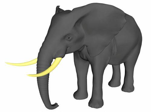 Afrikos, balta, didelis, gyvūnas, suaugęs, laukiniai, didelis, žinduolis, didelis penkis, vaikščioti, izoliuotas, dramblys, geltona, tusks, piešimas, fonas, didelis, dramblio kaulas, bagažinė, žandikaulis, du, stovintis, pilka, oda, Afrikos dramblys