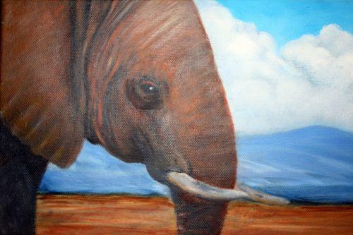 gyvūnas, dramblys, Afrikos, dažymas, išsamiai, menas, aliejus & nbsp, drobė, Afrikos dramblys drobė aliejuje