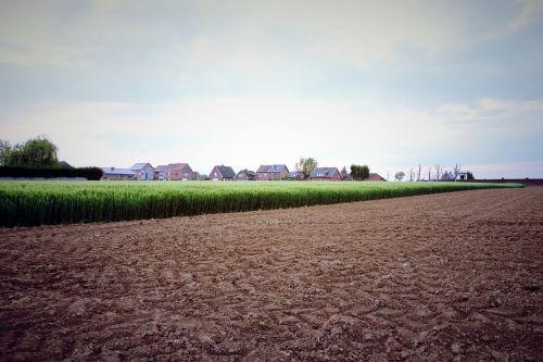 Žemdirbystė,kvieciai,pavasaris,laukas,kaimas,javai,ūkininkavimas,rugių laukas,žemės ūkio,rugiai,žemė,pasėlių,kaimas,arimas laukas,Belgija,scena,kraštovaizdis,ūkis