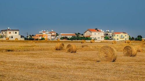 Žemdirbystė, ūkis, šiaudų, kaimo, kraštovaizdis, kaimo, laukas, peizažas, Hay, Žemės, žemės, žemės ūkio, žemės ūkio naudmenų, kaugė, derliaus nuėmimo, Paralimni, Kipras, derlius, pavasaris