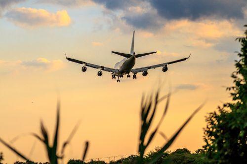 lėktuvas, sparnas, dangus, skrydis, orlaivis, gamta, lauke, kelionė, oras, oro uostas, vasara, saulėlydis, jfk oro uostas, oro uostas, Boeing 747, Boeing 747 iškrovimas, nukreipimo būdas, be honoraro mokesčio