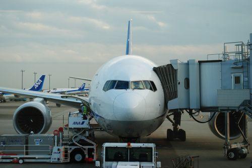 lėktuvas,haneda,vakaras,aso,kumamoto,oro uostas,asokumamoto oro uostas,Kumamoto oro uostas,įlaipinimo vartai