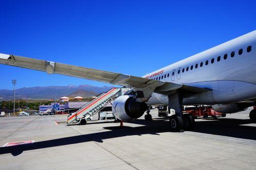 oro uostas,Tenerifė,takas,orlaivis,Atvykimas,žemė,nusileidimas,Reina sofía,Tenerifė į pietus