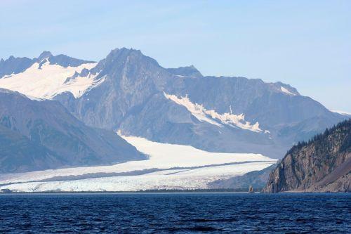 alaska,ledynas,ledynas,kraštovaizdis,kalnas,ledynas ledas,kalnai,jūra,vanduo