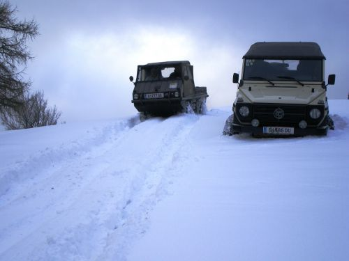 visureigė,offroad,puch,automatinis,Haflinger,sniegas,Visais ratais varoma,automobiliai