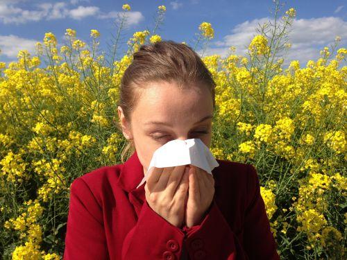 alergija,medicinos,alergija,alergeną,sveikata,medicina,žiedadulkės,reakcija