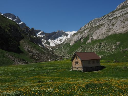 alpe,alm,meglisalp,säntis,Bergdorf,namai,Alpių kaimas,appenzell,vidausrhoden,Alpsteino regionas,Kelionės tikslas,bažnyčia,koplyčia,migracijos tikslas,Sakntis regionas