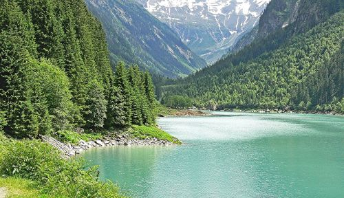 Alpių ežeras,austria,vis dar atmintis,Alpių,zillertaler alpen,kalnų šlaitai,Bergsee,Rokas,firn,ledinis vanduo,turkis,Švarus,kraštovaizdis,kalnai,kalninis ežeras,tyrol,rezervuaras,aukštas alpės,aukštas slėnis,Clam,spygliuočiai,spygliuočių miškas,atmintis,vis dar,užtvankos,miškas,zillertal,Mayrhofen