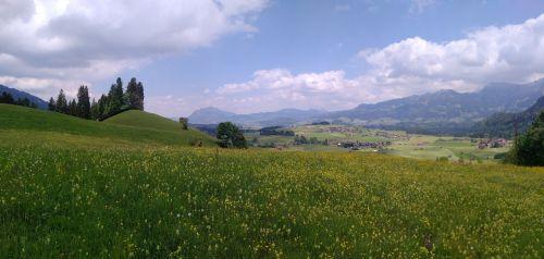 Alpių laukinės gamtos parkas,obermaiselstein,laukinio gyvenimo parkas,perspektyva,panorama,kraštovaizdis,Allgäu,vaizdas,regėjimas,pieva