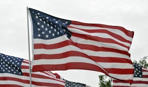 amerikiečių & nbsp, vėliavos, vėliavos, raudona & nbsp, balta & nbsp, mėlyna, usa, veteranas, 4th & nbsp, liepos, nepriklausomybė & nbsp, diena, memorialinis & nbsp, diena, amerikietiškos vėliavos