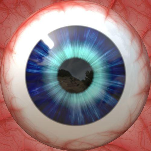 anatomija,akis,akies obuolys,žvilgsnis,regėjimas,mokinys,iris,optinis,išsamiai,makro,padengti,žmogus,optinis,objektyvas,matyti,ragenos,tinklainė,atrodo,anatominis