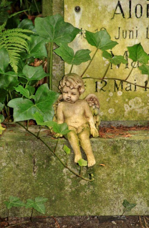 angelas,mažas angelas,figūra,skulptūra,sparnas,mielas,sėdėti,kapinės,kapas,kapinės,senas,ištemptas,samanos,ivy užrašas,kapo užrašas,gedulas,paminėti,kapas,atmintis