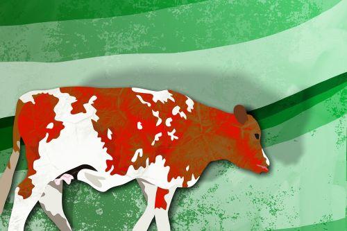 gyvūnas,laukinė gamta,laukinis gyvenimas,laukiniai,gamta,gyvenimas,karvė,žinduolis,fermos gyvūnas,ganymas,ganyti,gyvuliai,vidaus,Žemdirbystė,ūkis