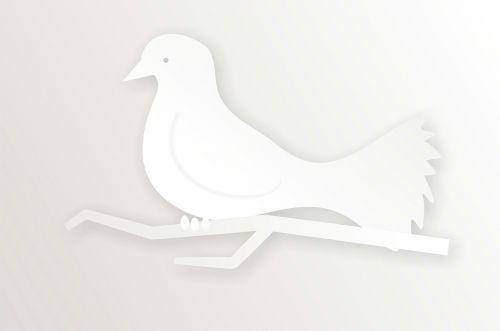 gyvūnas,gamta,laukiniai,laukinė gamta,laukinis gyvenimas,gyvenimas,balandis,paukštis,filialas,balandis,natūralus