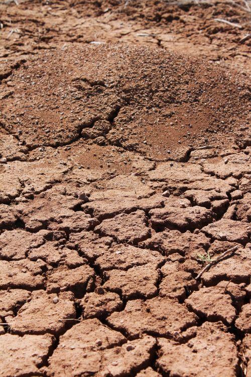 ant kalva,krekingo žemę,žemė,dirvožemis,parched dirvožemis,krekas,žemė,dykuma,purvas,sausra,Naujasis Meksikas,nevaisinga,žemė,sausas,pasaulinis atšilimas,raudona dirva,gintaro avalona