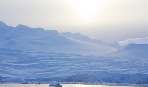 antarctica,ledas,ledynai,sniegas