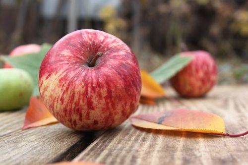 obuoliai,vaisiai,raudonas obuolys,žali obuoliai