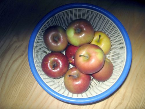 obuolys, obuoliai, fuji, Fuji & nbsp, obuoliai, krepšelis, raudoni & nbsp, obuoliai, obuoliai krepšyje