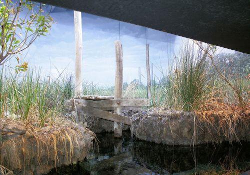 fonas, architektūra, iliustracijos, vis dar, gyvenimas, peizažas, akvariumo peizažas