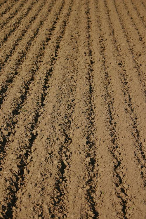 ariamasis,kiauras,žemės ūkio paskirties žemė,Žemdirbystė,laukas,gamta,laukai,kraštovaizdis,žemė,auginimas,aplinka,serijos,simetrija,žemė,dirvožemis,Ackerfurchen,dirvožemis,ruda