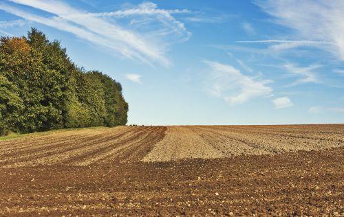 ariamasis,Žemdirbystė,žemės ūkio traktorius,žemės ūkio,agro nuotrauka,agrartechnik,žemės ūkio ekonomika,auginimas,atsipalaiduoti,Bauer,ūkis,redagavimas,mėlynas,žemė,žemės dirbimas,mityba,laukas,lauko ekonomika,pavasario tvarka,getreideanbau,kultivatorius,Grub bern,dangus,kalnas,kalvotas,trupiniai,žemės ūkio mašina,landtechnik,ūkininkas,pakuotojas,augalininkystė,paruošimas sėkloms,vilkikas,traktorius