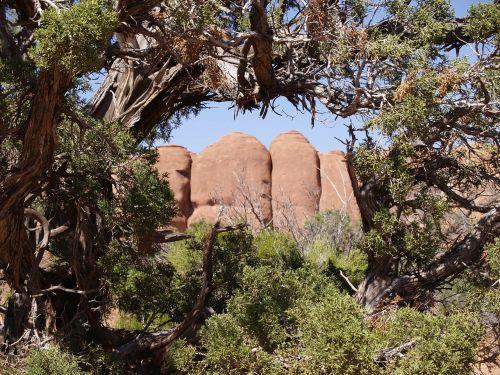 Arkos Nacionalinis Parkas, Kalnas, Raudona, Akmenys, Arizona, Usa, Kraštovaizdis, Peizažas, Karštas, Sausas, Dykuma, Uolienų Formavimas, Gamta, Erozija, Pietvakarių Usa