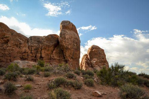arkos nacionalinis parkas,medžiai,šepetys,akmenys,dykuma,arkos,uolienos formacijos,Utah
