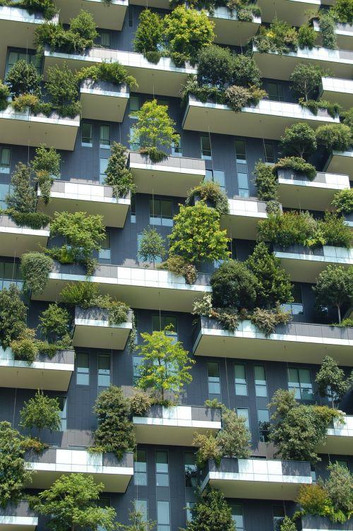 architektūra,pastatas,žalia architektūra,aukštybinis,šiuolaikiška,modelis,augalai,langai