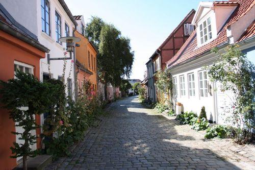 Århus,idilija,bruģių gatvė,mažoji gatvė,pėsčiųjų takas,vasara,saulėta diena,namai,mažas,balta,spalvinga,siauras gatvė