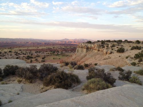 Arizona,dykuma,gamta