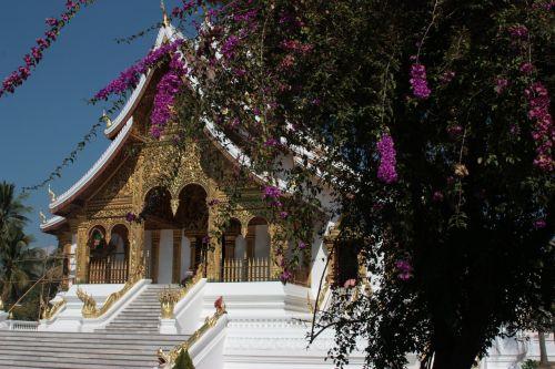 Asija, Šventykla, Laosas