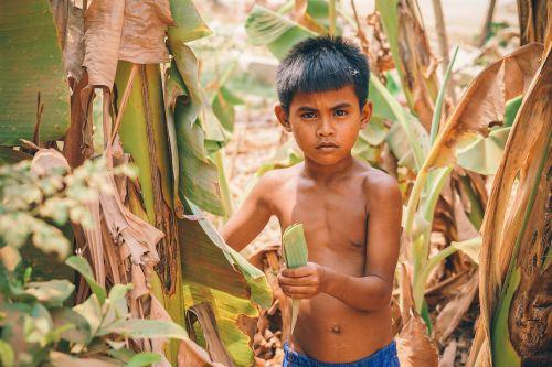 asija,asian,berniukas,Kambodža,Kambodža,vaikas,pasėliai,kultūra,mielas,tautybė,egzotiškas,ūkis,ūkininkavimas,žemės ūkio paskirties žemė,laukas,maistas,Lytis,žalias,žmogus,vaikas,žiūri,vienas,asmuo,portretas,kelti,kelia,bananai,rimtas,stovintis,į pietryčius,turizmas,tradicinis,kelionė,kaimas