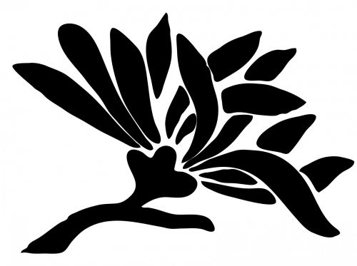 asian, gėlė, asian & nbsp, gėlė, juoda, siluetas, menas, logotipas, iliustracija, balta, fonas, Scrapbooking, dizainas, Iliustracijos, Laisvas, viešasis & nbsp, domenas, asian gėlių siluetas
