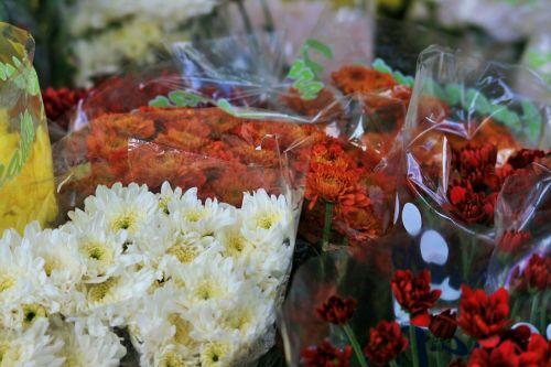 floristas, gėlės, spalvoti, kekės, vietinėje floristoje
