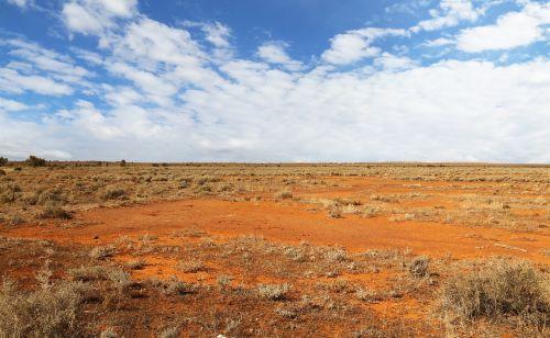 australia,dykuma,raudona,sausas,gamta,kraštovaizdis,desolate,plačios atviros erdvės