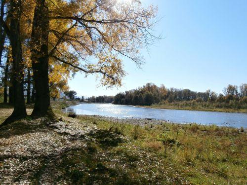 ruduo,medžiai,gamta,vaikščioti,kraštovaizdis,rudens paplūdimys,lapai,geltonieji lapai,rudens diena,upė,rami upė,mažoji upė,altas
